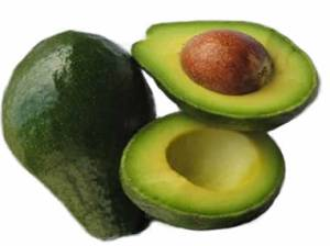avocado_fruit